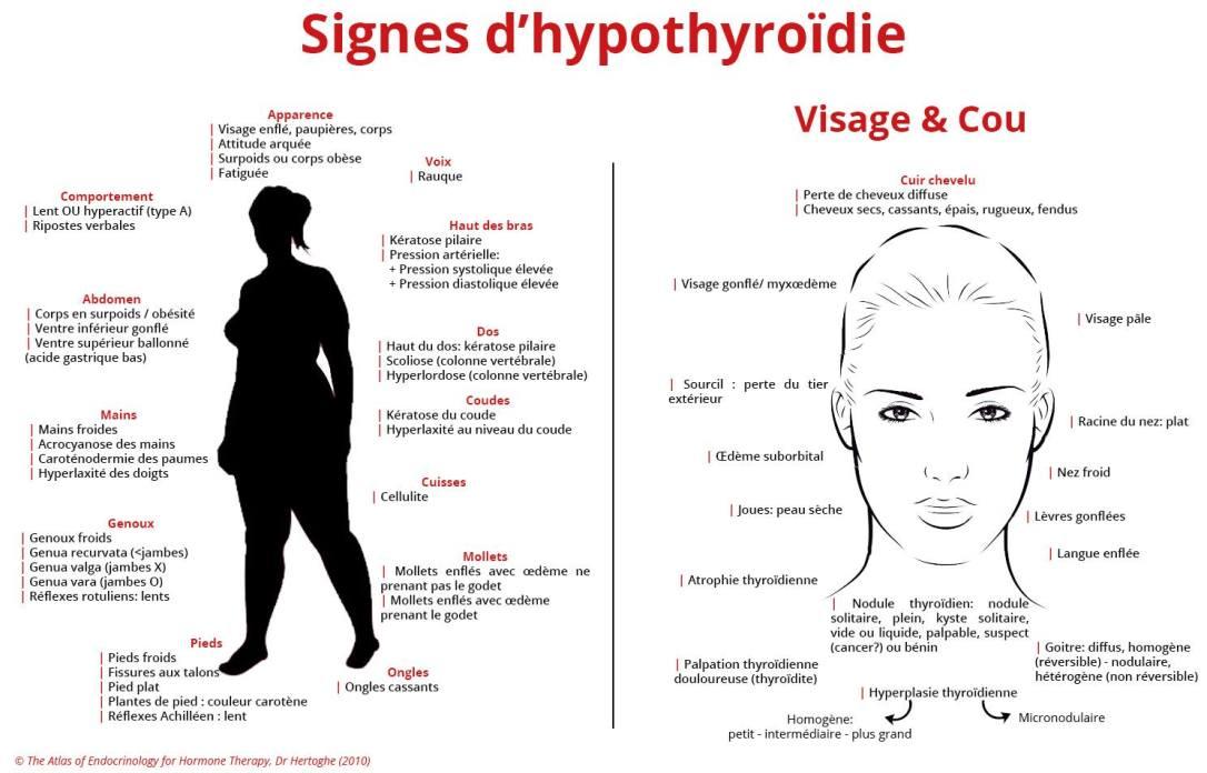 thyroide8